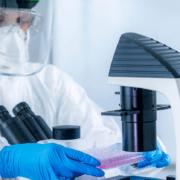 Brasil: desenvolvimento de vacina contra Covid-19