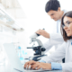Brasil recebe aval da OCDE em recomendações na área de ciência e tecnologia