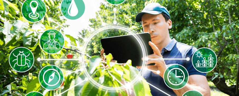 Presidente da Embrapa destaca importância do investimento em inovação no agronegócio
