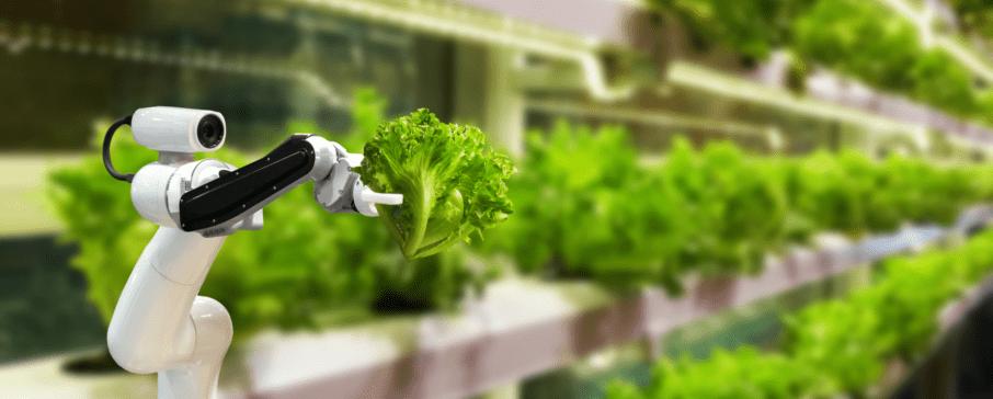 Agronegócio: programa levará tecnologias 4.0 e investimento para o setor