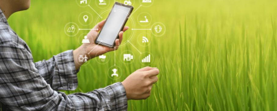 Agronegócio é um dos setores mais demandados de recursos por abarcar diferentes áreas da economia gaúcha e múltiplos negócios